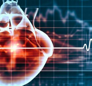 Cardiac stem cells clinical trial results
